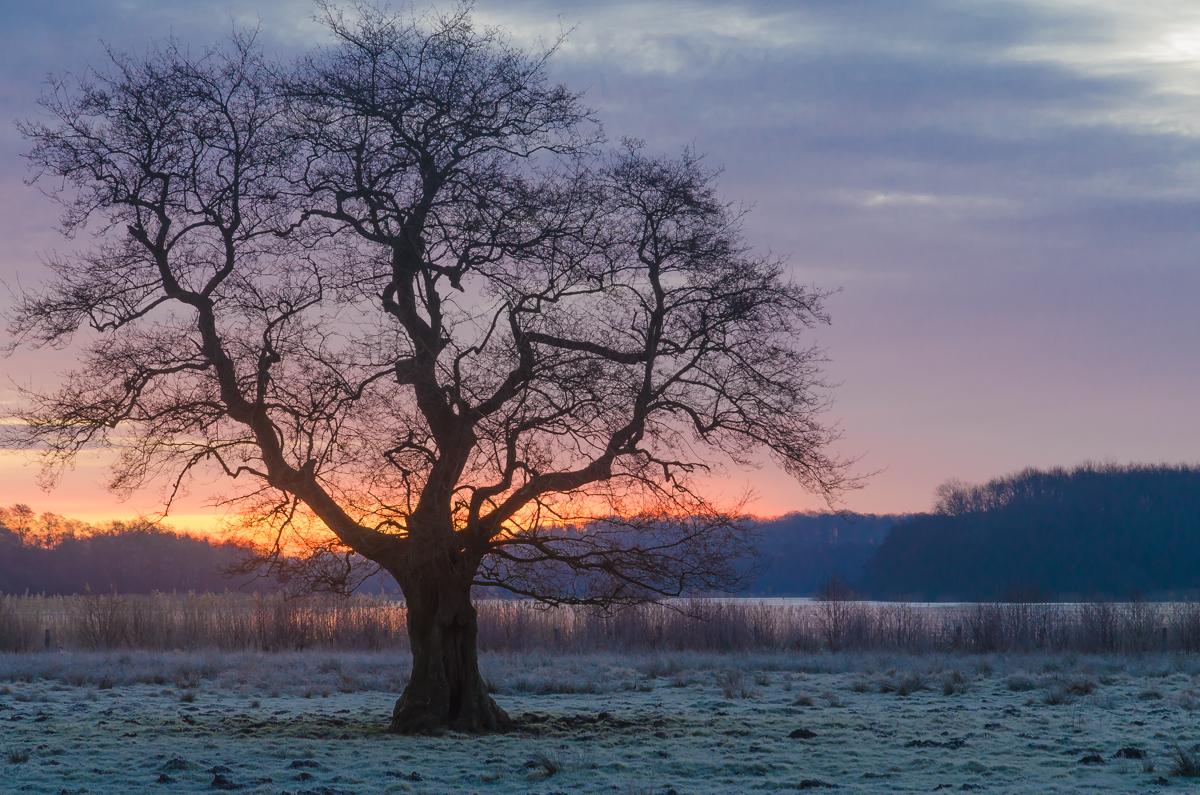März Sonnenaufgang