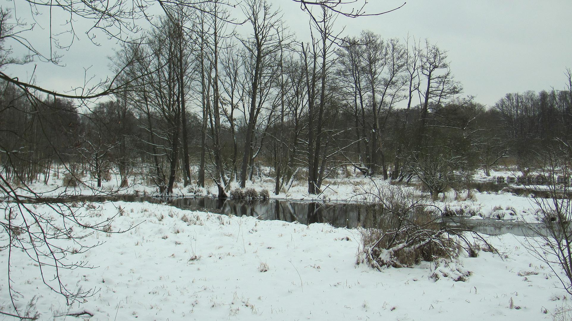 März Winter am Fließ I