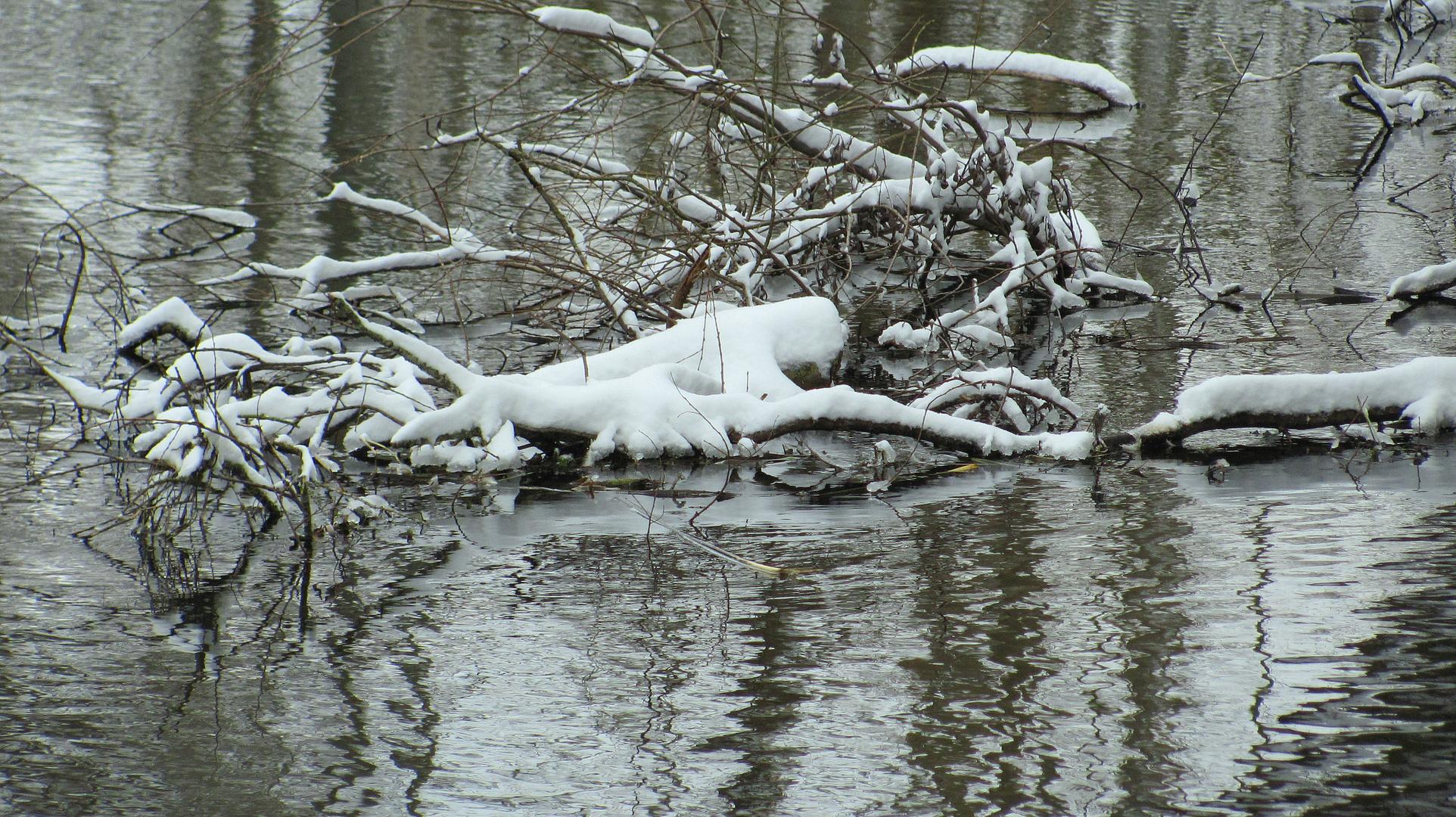 März Winter am Fließ II
