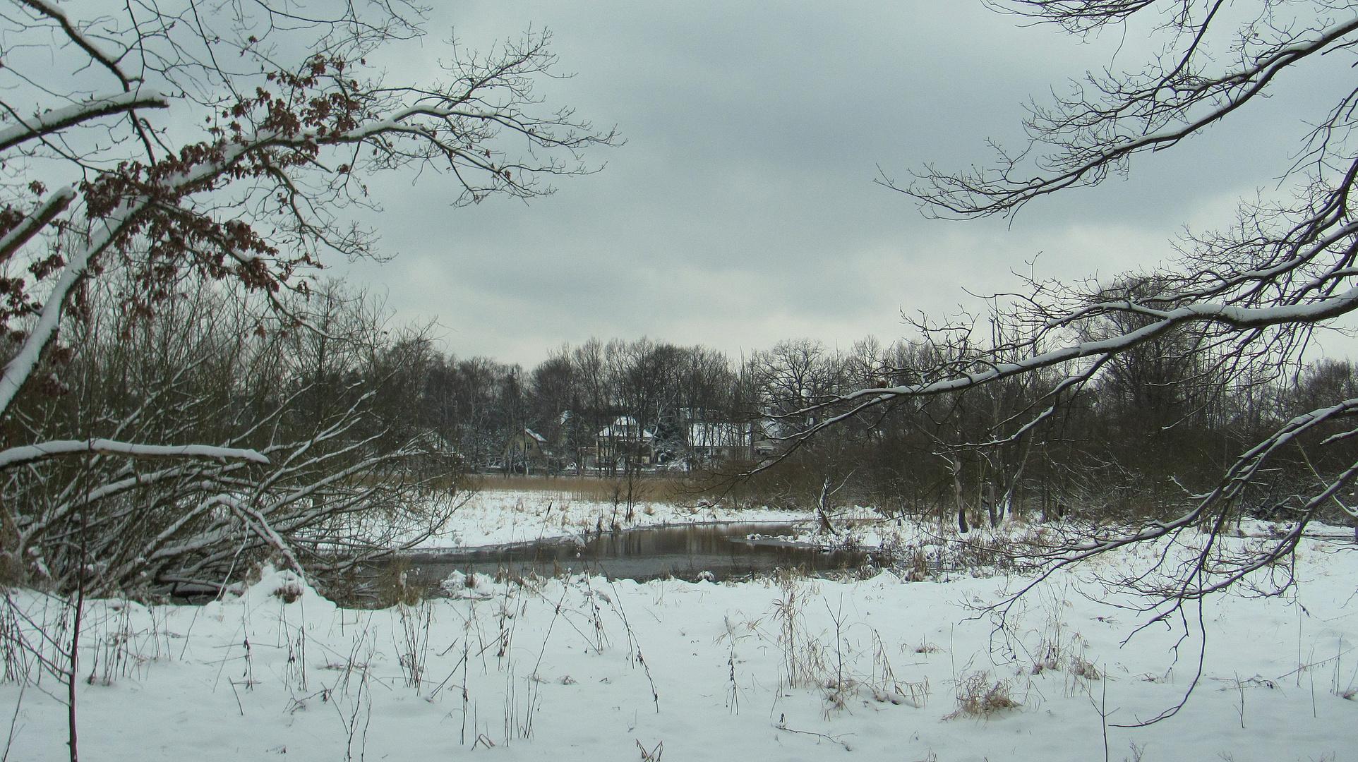 März Winter am Fließ III
