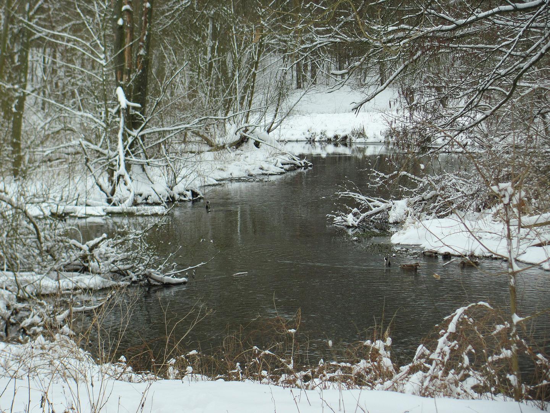 März Winter am Fließ IV