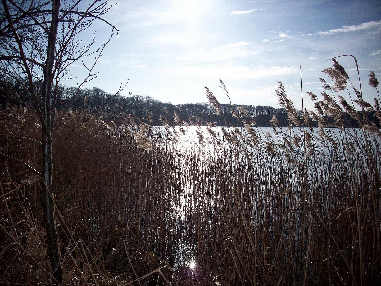 Märzsonne am See