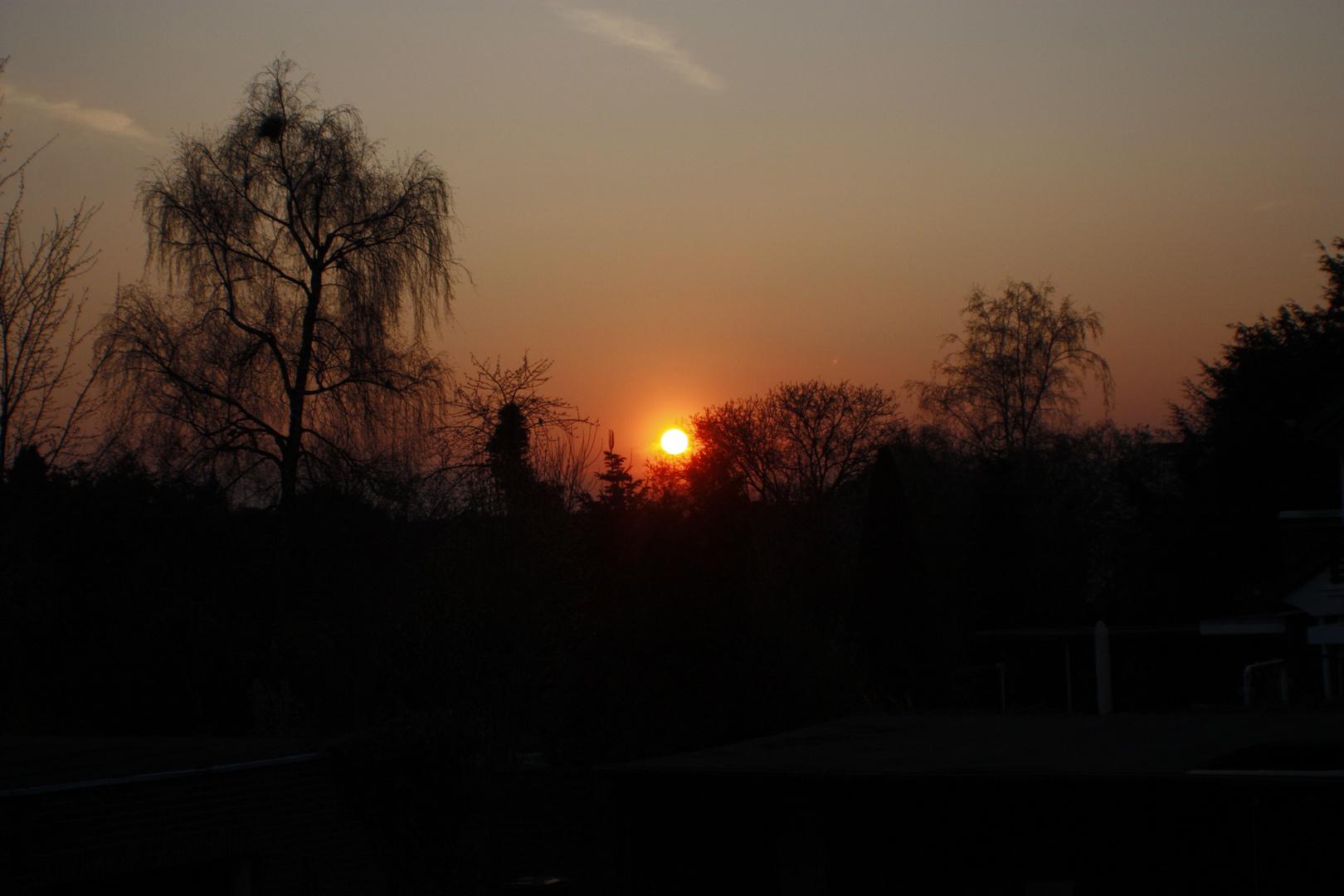Märzsonne