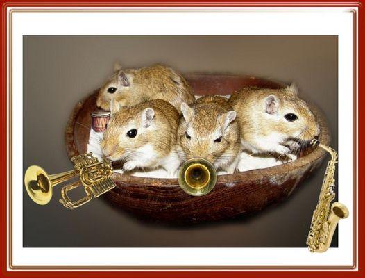 Mäuse-Big-Band