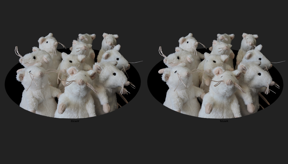 Mäuseloch