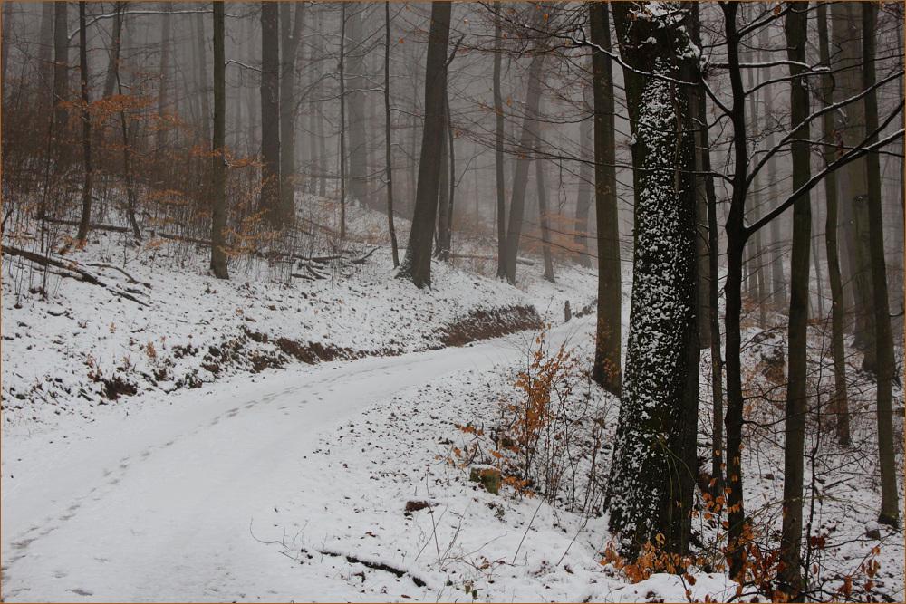 Mag keinen Schnee mehr sehen