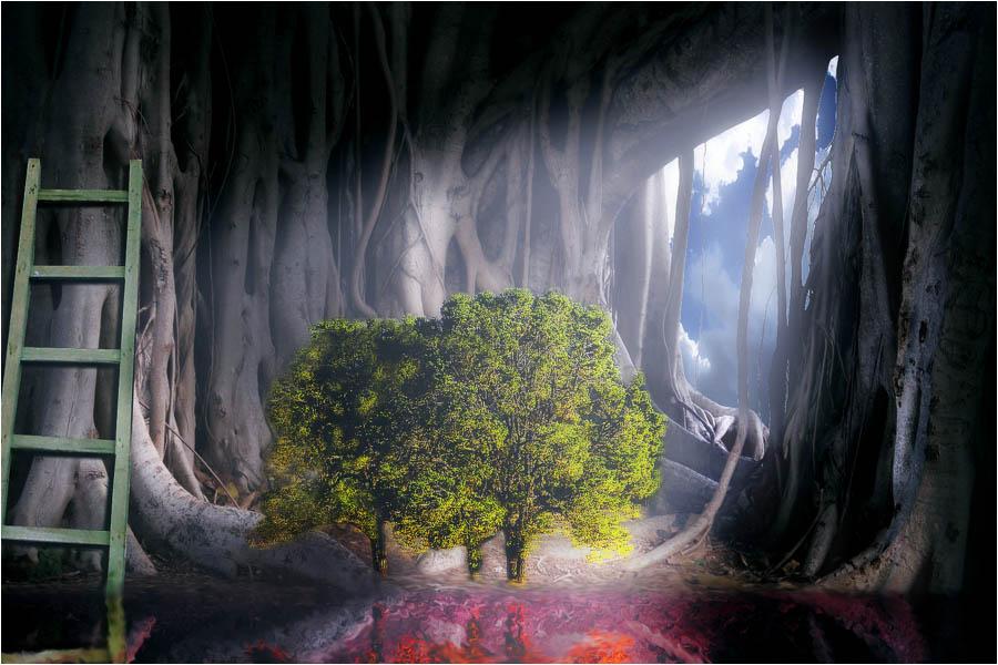 Magic cavern
