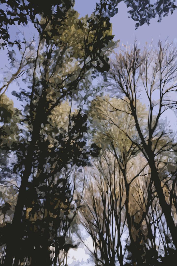 Magic Trees - I