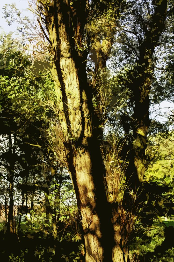 Magic Trees - II