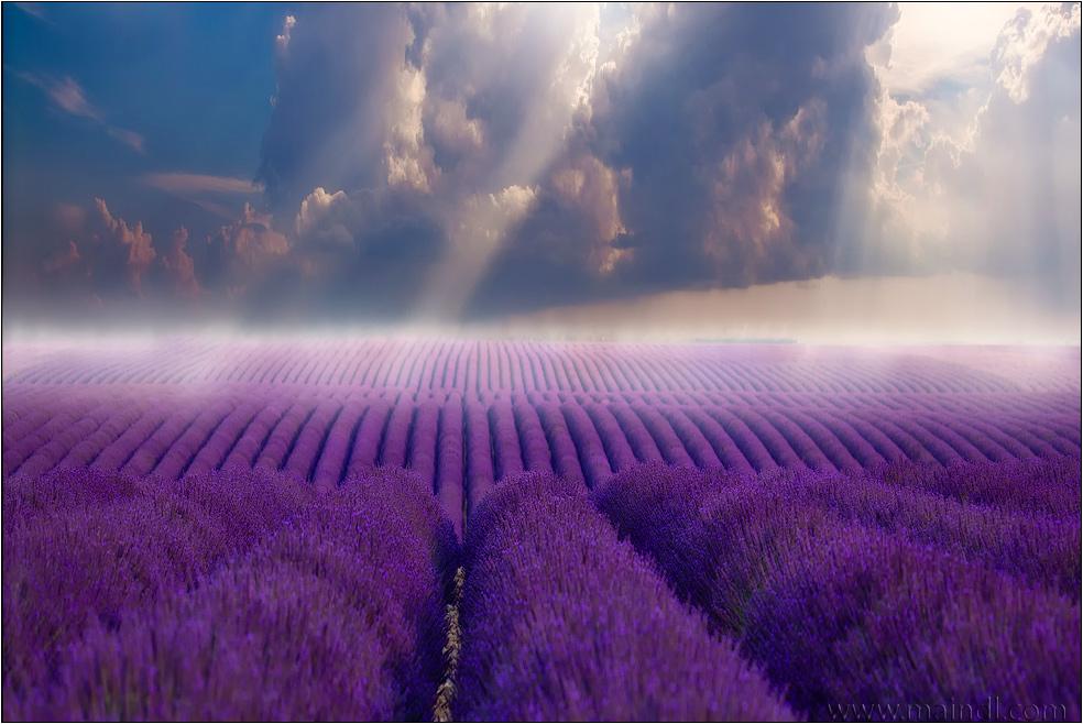 magie de la Provence