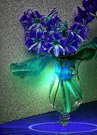 Magie der blauen Lilie