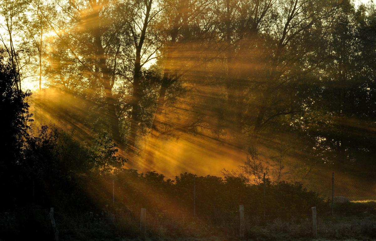 Magie der Sonne 3