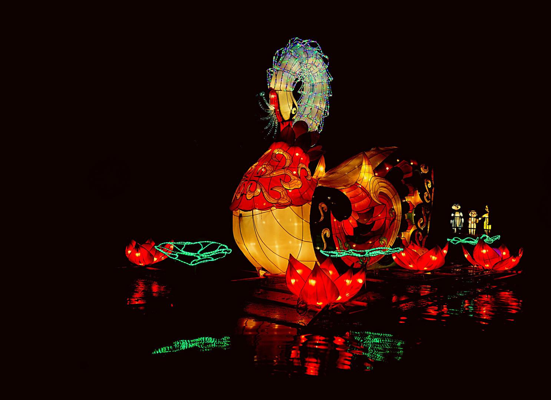 Magische Lichterwelten (1)