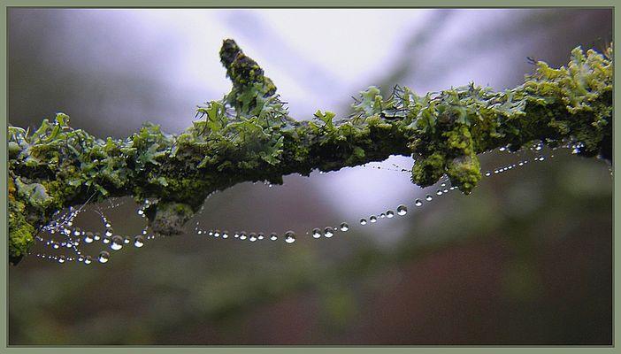 magische Perlenkette/chaîne magique