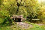 Magischer Ort im Herbst I