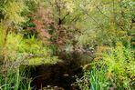 Magischer Ort im Herbst II