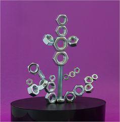 Magnetismus-Muttern
