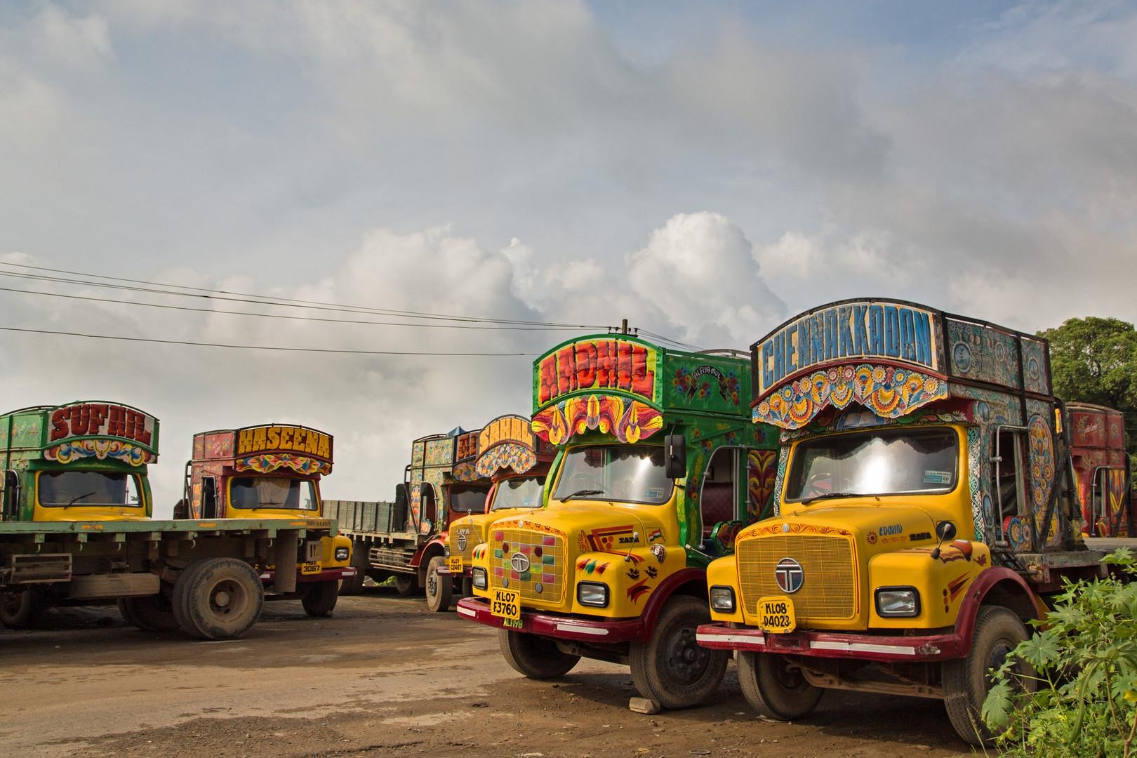 Magnifiques camions paints qu'on voit un peu partout