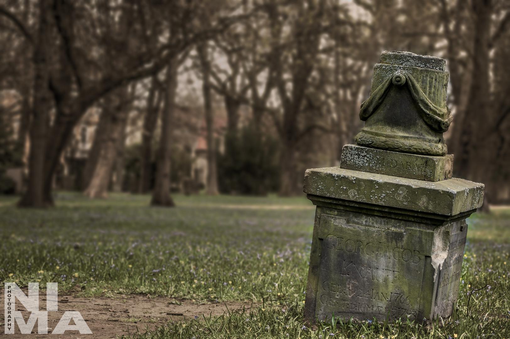 Magnifriedhof, Braunschweig