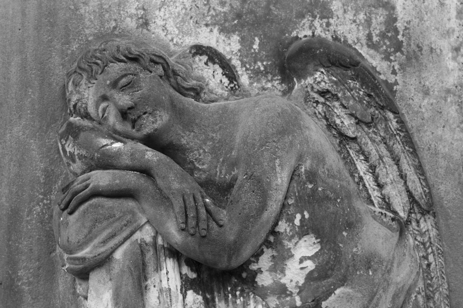 Magnifriedhof Braunschweig X