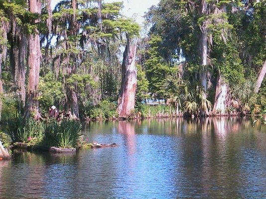 Magnolia Plantation Charleston SC 02