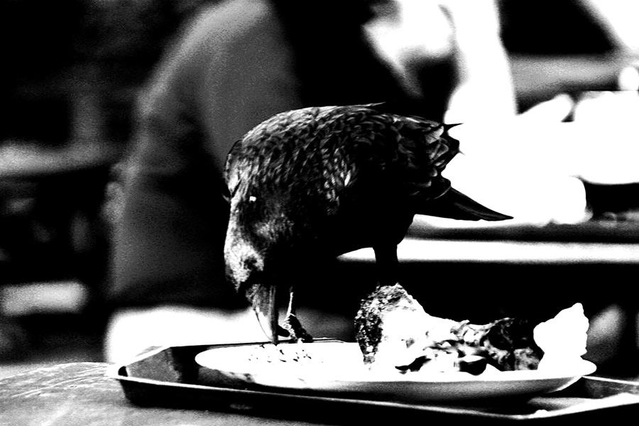 Mahlzeit...