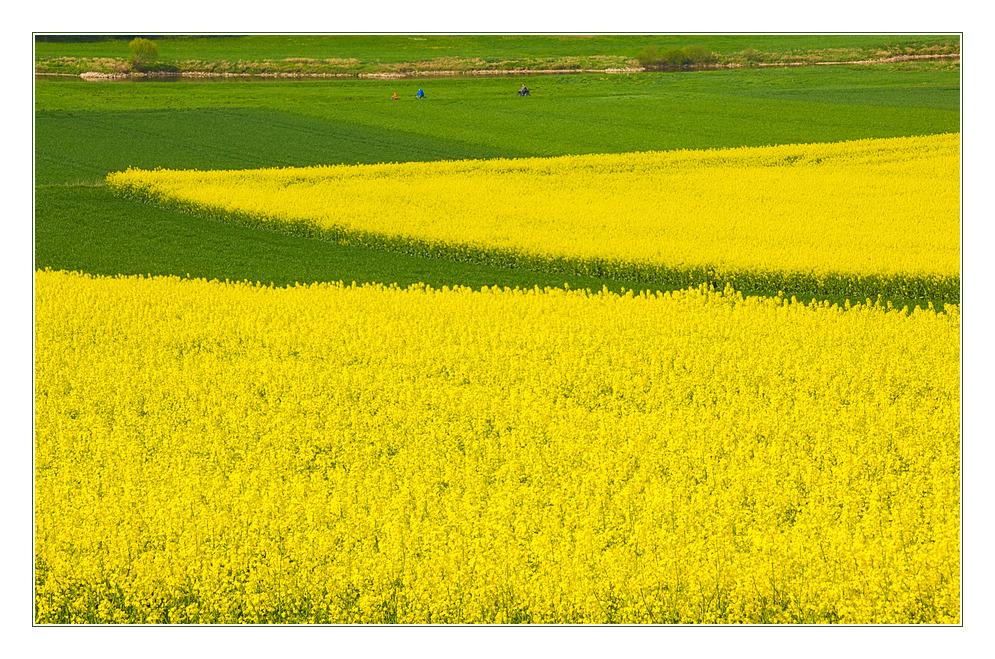 Mai-Ausflug an der Weser entlang...