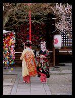 Maikos à Kyoto