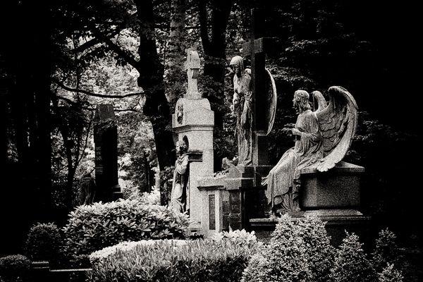 Main Cemetery Cologne III