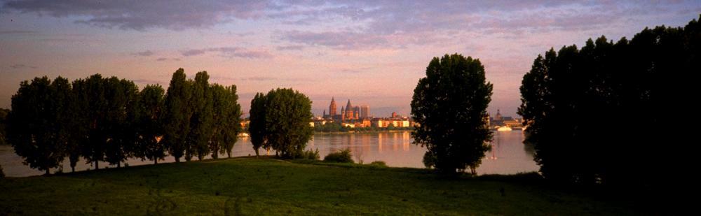 Mainz von der Mainspitze aus