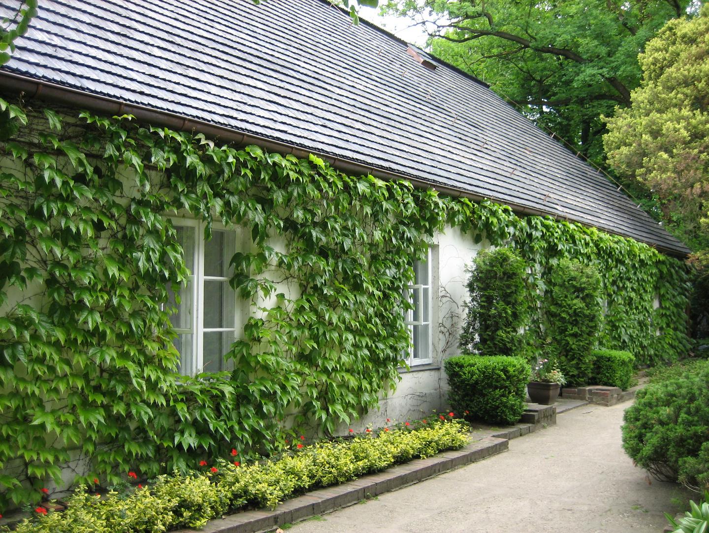Maison natale de Frédéric CHOPIN