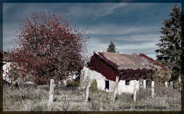 Maison Oubliée