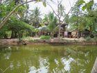 Maison rurale cambodgienne