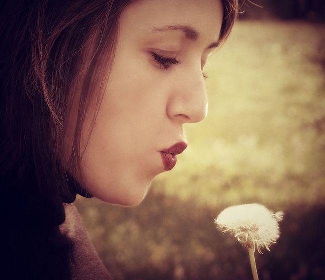 ...make a wish!