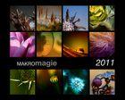 makromagie 2011...