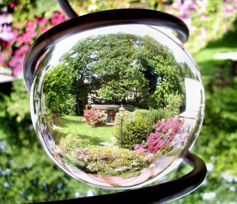 Mal ein anderer Blick in den Garten