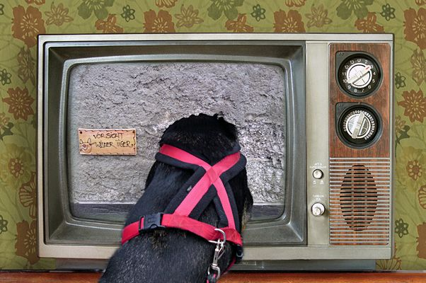   Mal schauen, was es heute im Fernsehen gibt  
