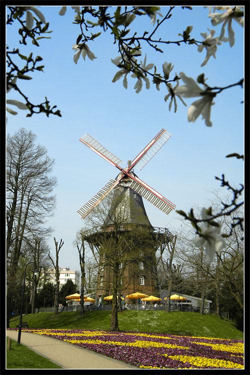 (Mal wieder) Bremen: Mühle am Wall