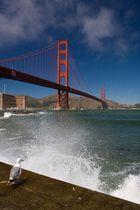 mal wieder Golden Gate