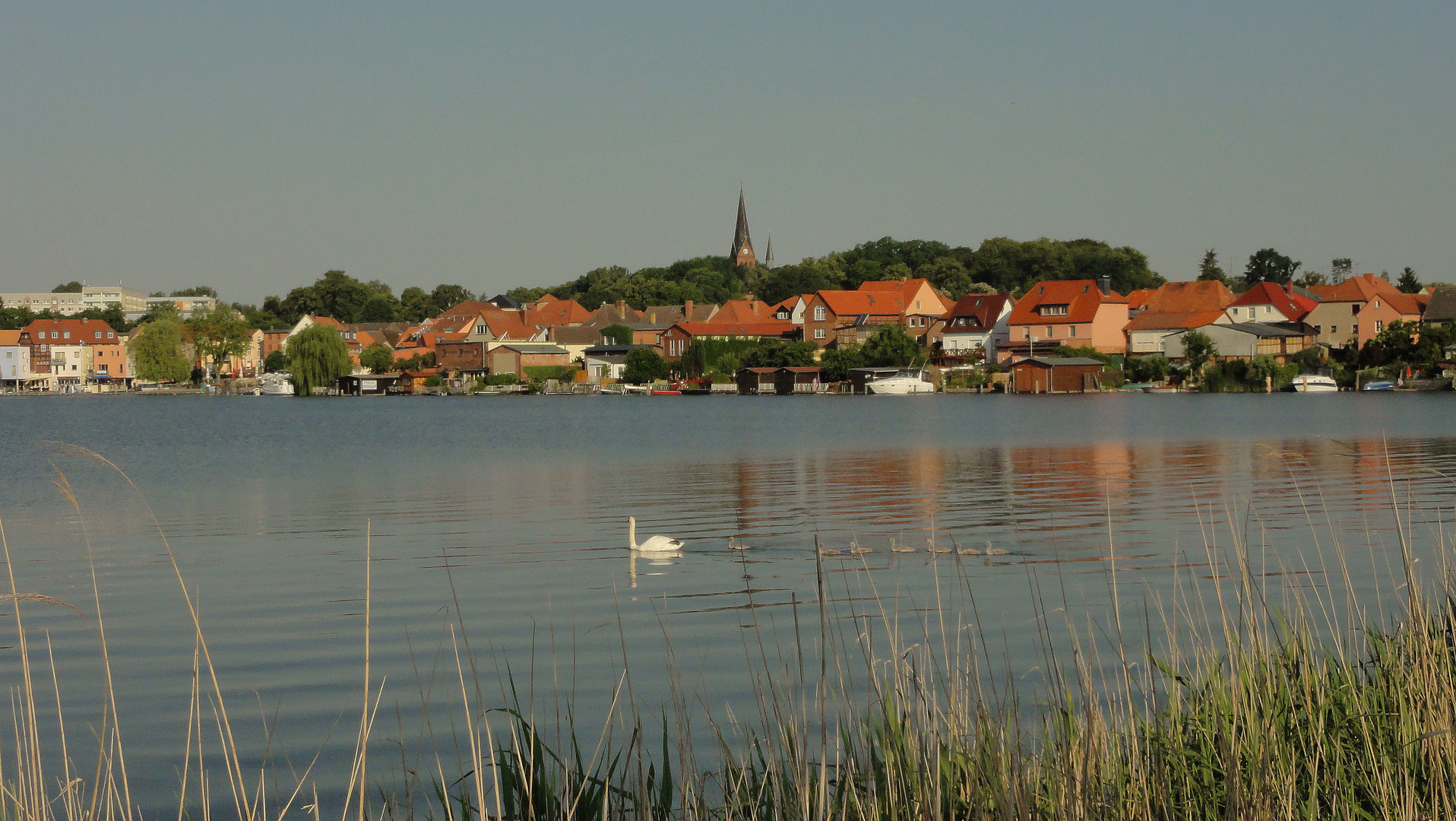 Malchower See 01