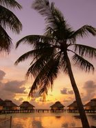Maldive - Sunset time.