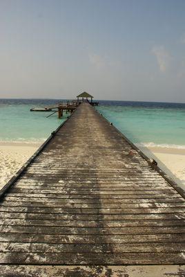 MALDIVES - Droit vers l'océan