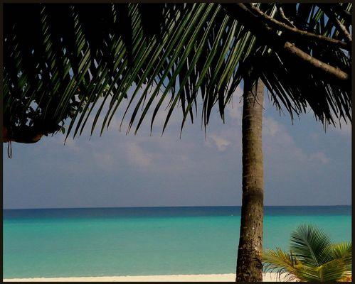 Malediven Dezember 2007