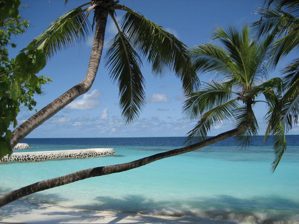 malediven tropisch meer strand - photo #8