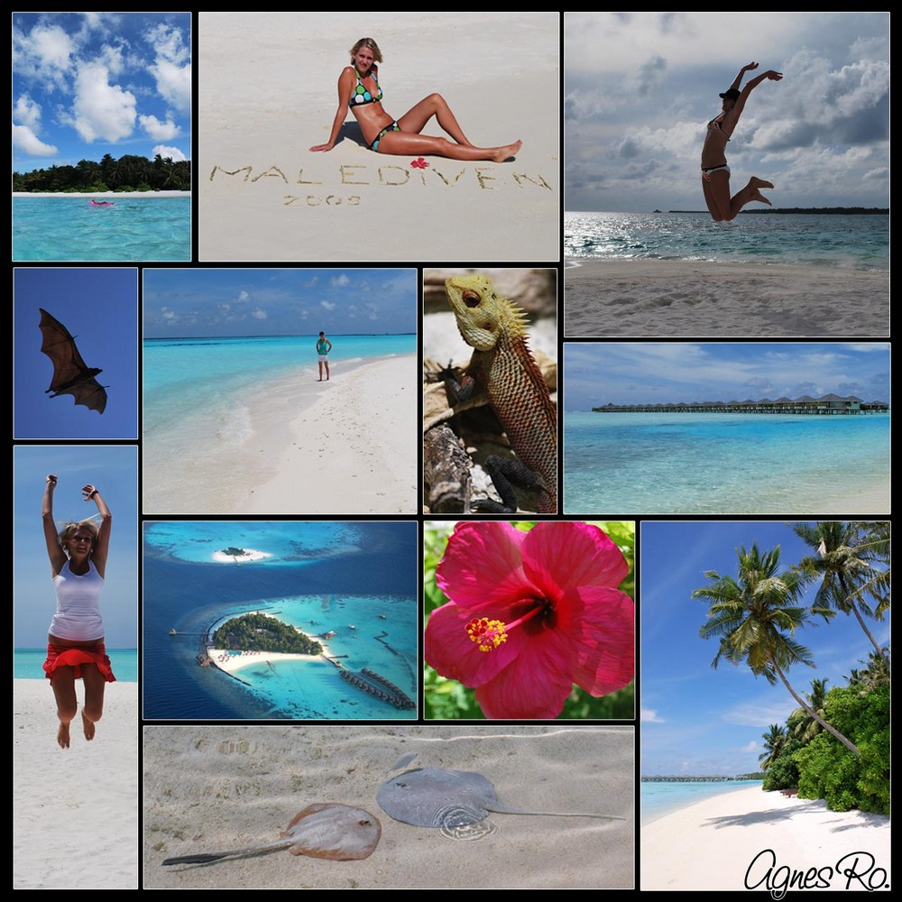 Malediven - Impressionen