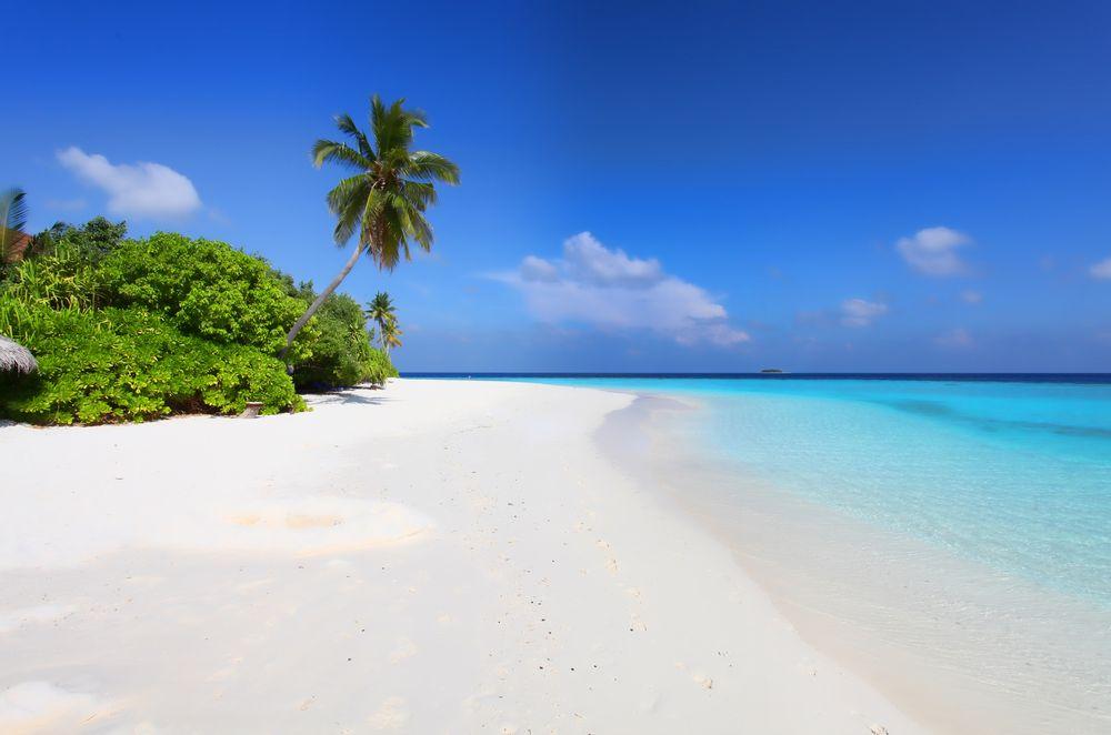 strand und meer foto bild asia indian ocean malediven bilder auf. Black Bedroom Furniture Sets. Home Design Ideas