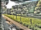 Malerische Landschaft 2