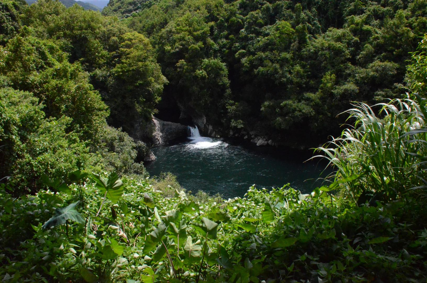Malerisches Gewässer auf La Reunion (bei St. Suzanne im Norden)