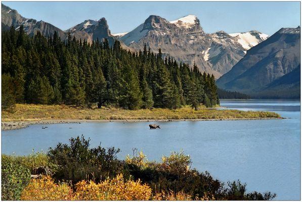 Maligne Lake - Jasper N.P. - Alberta - Kanada