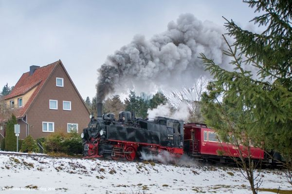 Mallet im Harz